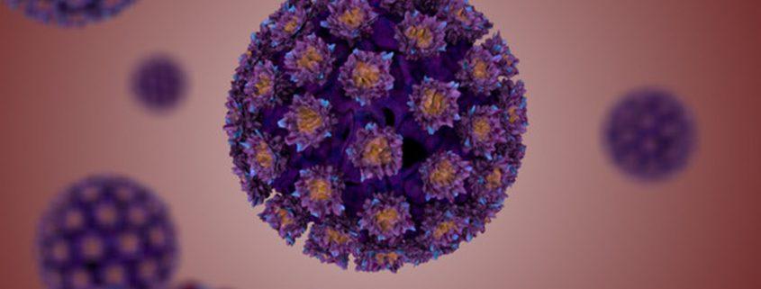 hpv humaan papillomavirus